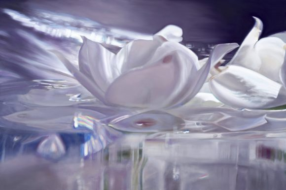 ©Madison Cawein Gardenia Flower Oil Paintings