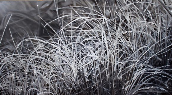 "Cawein - Monsoon Grasses II, 2019. Oil on canvas, 25 3/4"" x 37 1/2"""